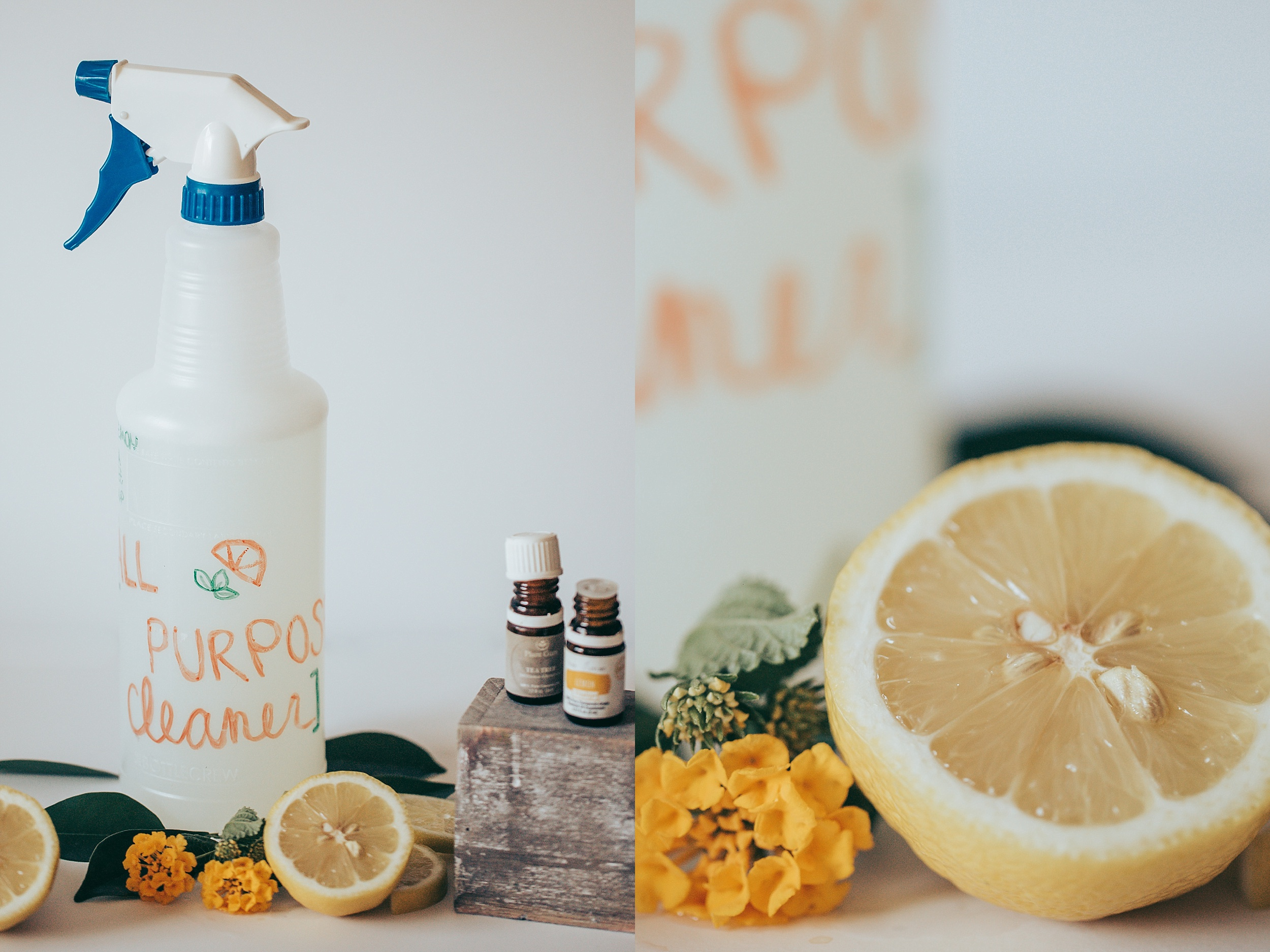 cut the toxic out of your life: DIY all purpose cleaner